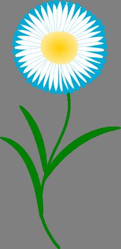 manžílek, květina.