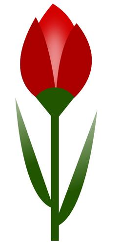 přání ke kulatinám podle stáří, kytička, kytka.