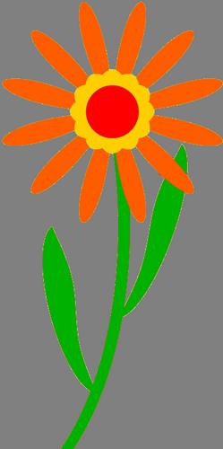 sms, kytka, květina.