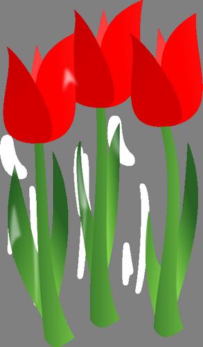 Obrázková a textová přáníčka pro děti i dospělé, tulipány, květiny.